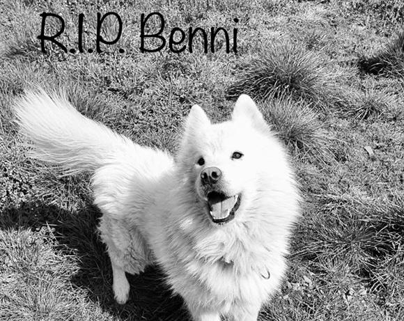 Benni †