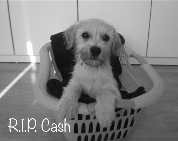 Cash †