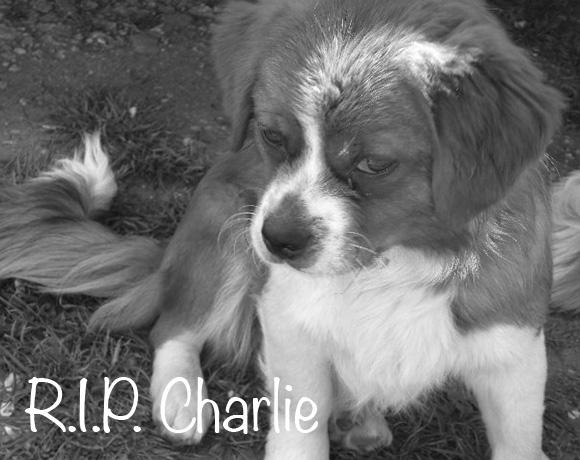 Charlie †