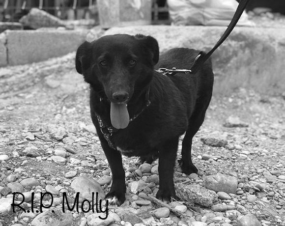 Molly †