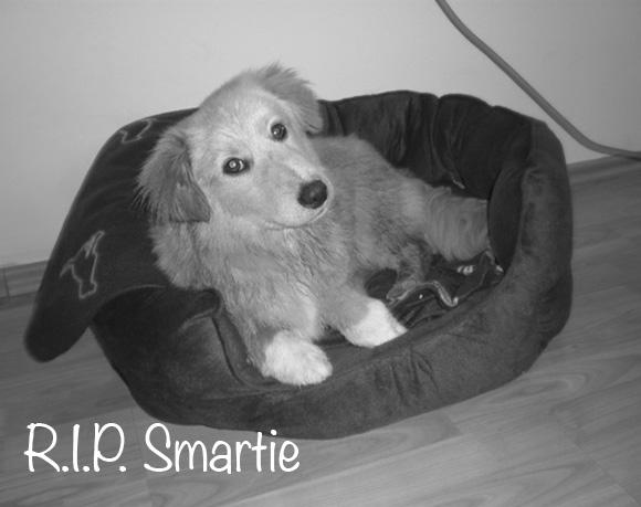 Smartie †