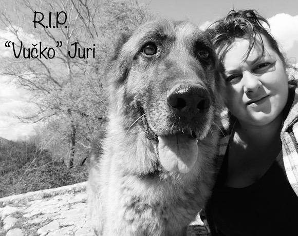 💔 Wir nehmen Abschied von Juri 💔