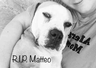 Matteo †